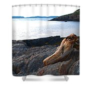 Resting Traveller Shower Curtain