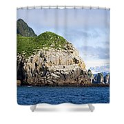 Resurrection Bay 2 Shower Curtain