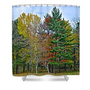 Retreating Pines Shower Curtain