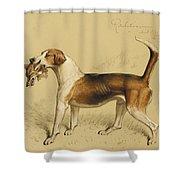 Retribution Shower Curtain by Basil J Nightingale