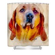 Retriever Shower Curtain