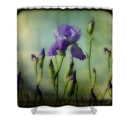 Retro Iris Metting Shower Curtain