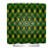 Pattern Plastic Shower Curtain