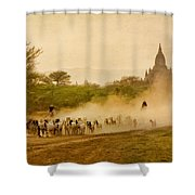 Returning From Pasture 4 Shower Curtain