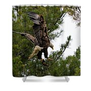Returning With Dinner Shower Curtain