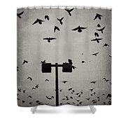 Revenge Of The Birds Shower Curtain