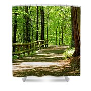 Wooded Path 15 Shower Curtain