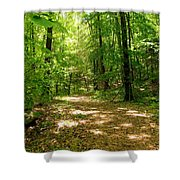 Wooded Path 16 Shower Curtain