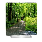 Wooded Path 20 Shower Curtain