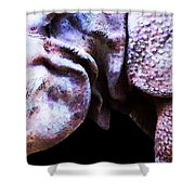Rhino 2 - Buy Rhinoceros Art Prints Shower Curtain