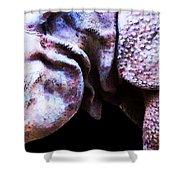 Rhino 2 - Buy Rhinoceros Art Prints Shower Curtain by Sharon Cummings