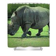 Rhino And Friend Shower Curtain