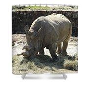 Rhino Eating Shower Curtain