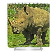 Rhino Look Shower Curtain