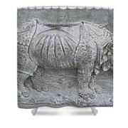 Rhino Relief - Church Door Detail Pisa Shower Curtain