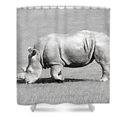Rhinoceros Charcoal Drawing Shower Curtain