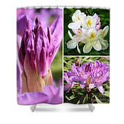 Rhododendron Collage Shower Curtain