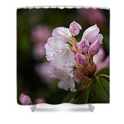 Rhododendron Enborne Shower Curtain