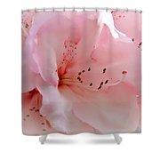 Pink Rhododendron Flower Shower Curtain