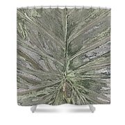 Rhododendron Leaf Shower Curtain