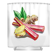 Rhubarb And Ginger Shower Curtain