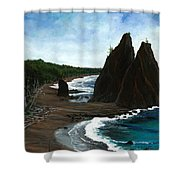 Rialto Beach Wa Shower Curtain
