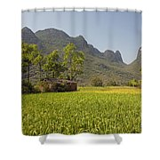 Rice Farm Shower Curtain