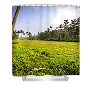 Rice Field Shower Curtain
