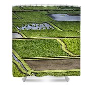 Rice Paddies Shower Curtain