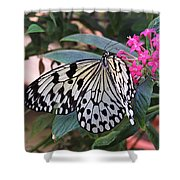 Rice Paper Butterfly Shower Curtain