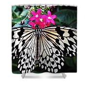 Rice Paper Butterfly On Pink Shower Curtain