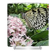 Rice Paper On Flower Shower Curtain