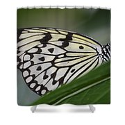 Rice Paper On Leaf Shower Curtain