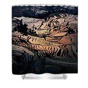 Rice Terrace Field Of Yuan Yang Shower Curtain