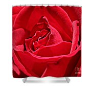 Rich Red Shower Curtain