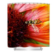 Rich Reward Shower Curtain