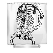 Rickets Shower Curtain