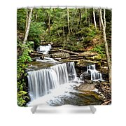 Ricketts Glen Delaware Falls Shower Curtain