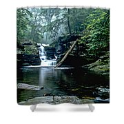 Ricketts Glen Falls 016 Shower Curtain