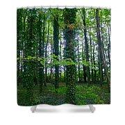 Ridgeway Trees Shower Curtain