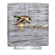 Riding Piggy Back Shower Curtain