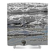 Riding The Ice Flow  Shower Curtain