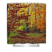 Right Place Right Time Shower Curtain