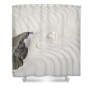 Right Step Shower Curtain