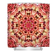 Ring Of Divinity Shower Curtain