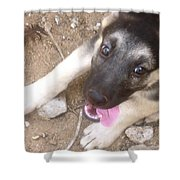 Rio At Home Shower Curtain