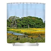 Riot Of Color Shower Curtain