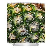 Ripe And Green Shower Curtain