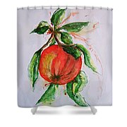Ripe And Ready Shower Curtain
