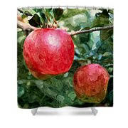 Ripe Red Apples On Tree Shower Curtain